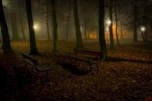 Krobia Park we mgle