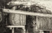 31 - Fabryka win owocowych piwnice