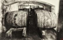 67 - Fabrykacja win owocowych - piwnice